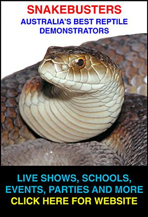 Australia's best reptile shows, Melbourne.